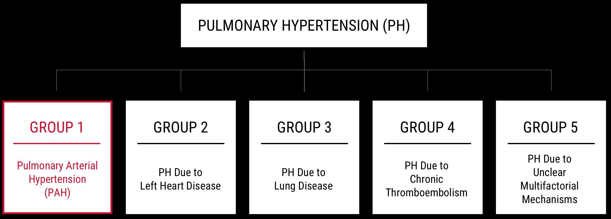Pulmonary Hypertension Classification
